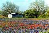 Drug Treatment Centers Dallas Texas